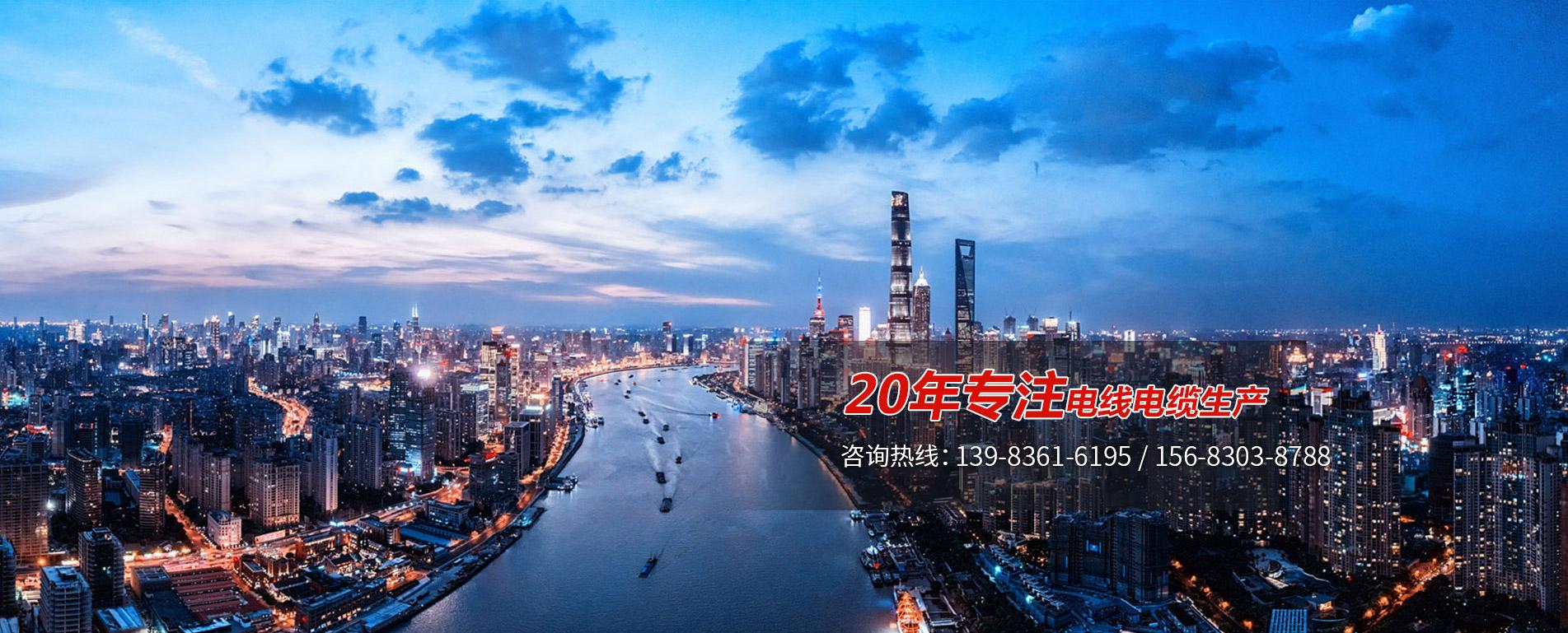 重庆高低压电力电缆
